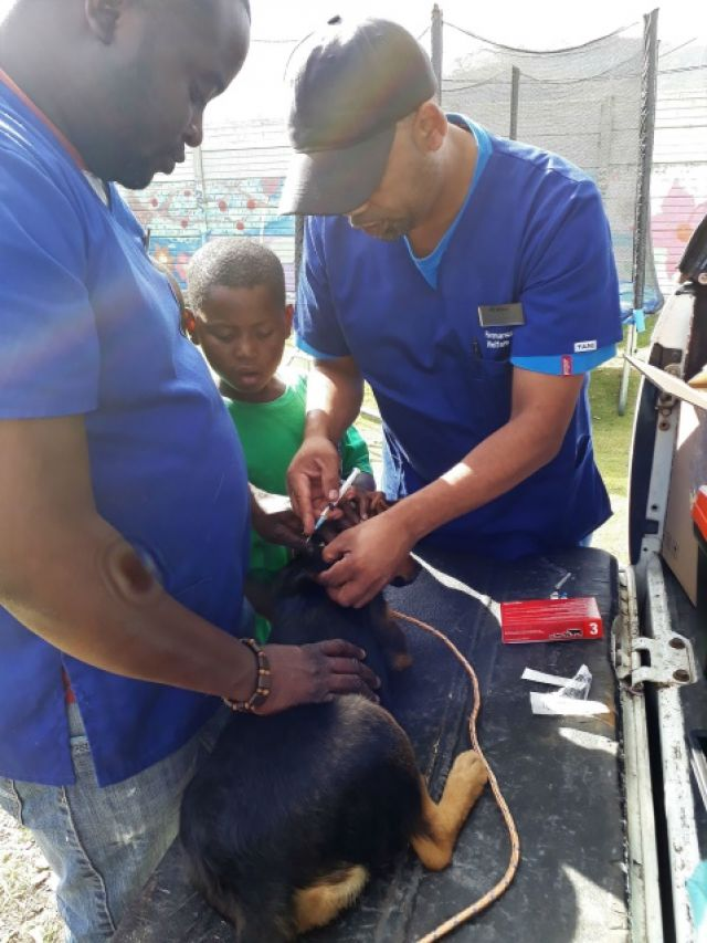 HAWS Mobile Clinic
