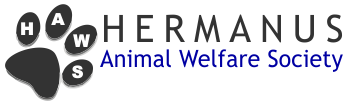 Hermanus Animal Welfare Society | Giving Life Where It Matters Most